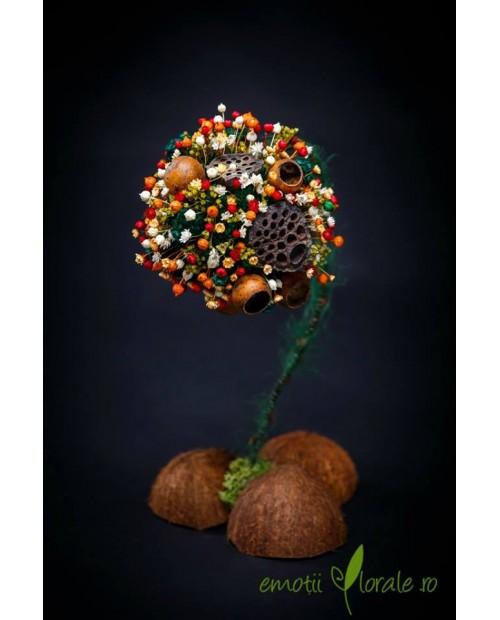 Copac special cu flori uscate B305C5