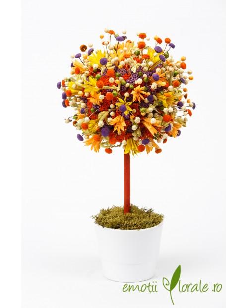 Copacul cu emotii colorate C54B4