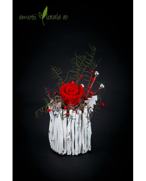 Aranjament cu trandafir natural rosu stabilizat ROZE03