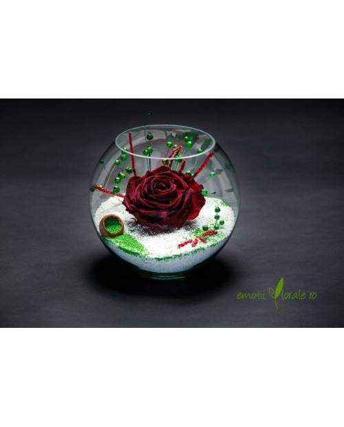 Aranjament floral cu trandafir mare natural stabilizat T505N5
