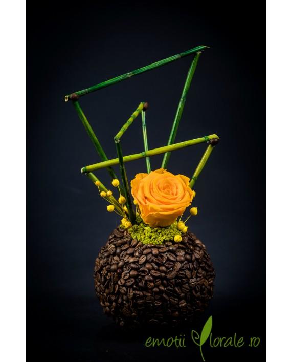 Aranjament floral cu trandafir natural stabilizat V14P15