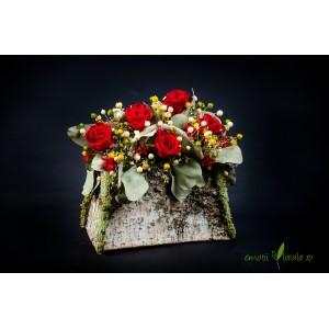 Aranjament floral cu 5 trandafiri naturali stabilizati rosii V14P18