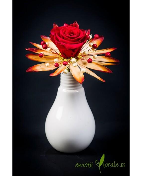 Aranjament floral cu trandafir natural stabilizat V14P27