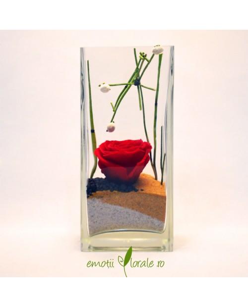 Aranjament floral trandafir stabilizat rosu V21R2