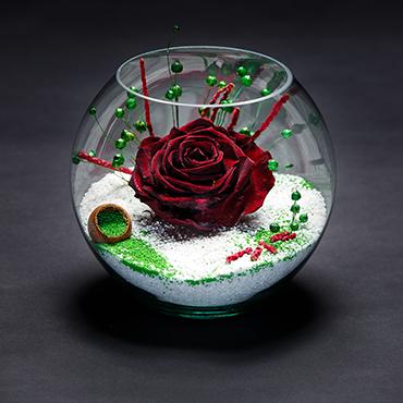 aranjament-trandafir-stabilizat